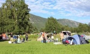 telt-forminsket